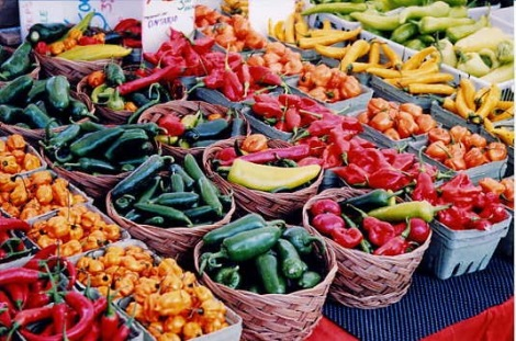Winter-Garden-Farmers-Market