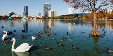 A view of the skyline of Orlando, Florida from across Lake Eola.; Shutterstock ID 95923726; name: Deb Wenof; Client: Marriott ; Publication: Marriott Traveler Orlando; Story ID: 5 Fun, Free (or Almost Free) Things to Do in Orlando With Kids